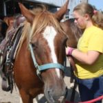 Camp Ondessonk Horse programs and lessons