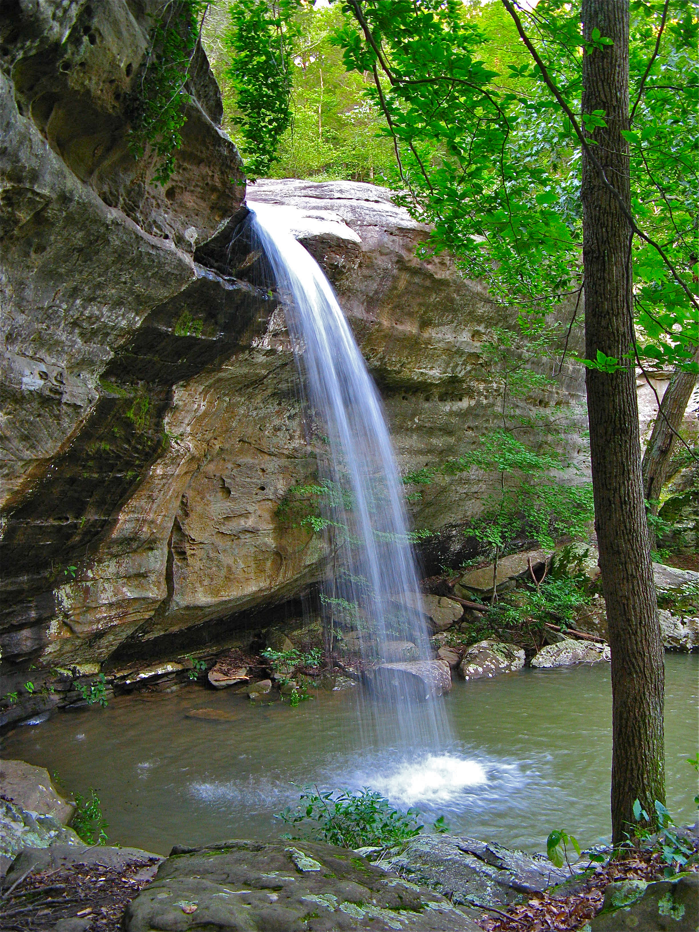 waterfalls illinois near hiking trails ondessonk springfield
